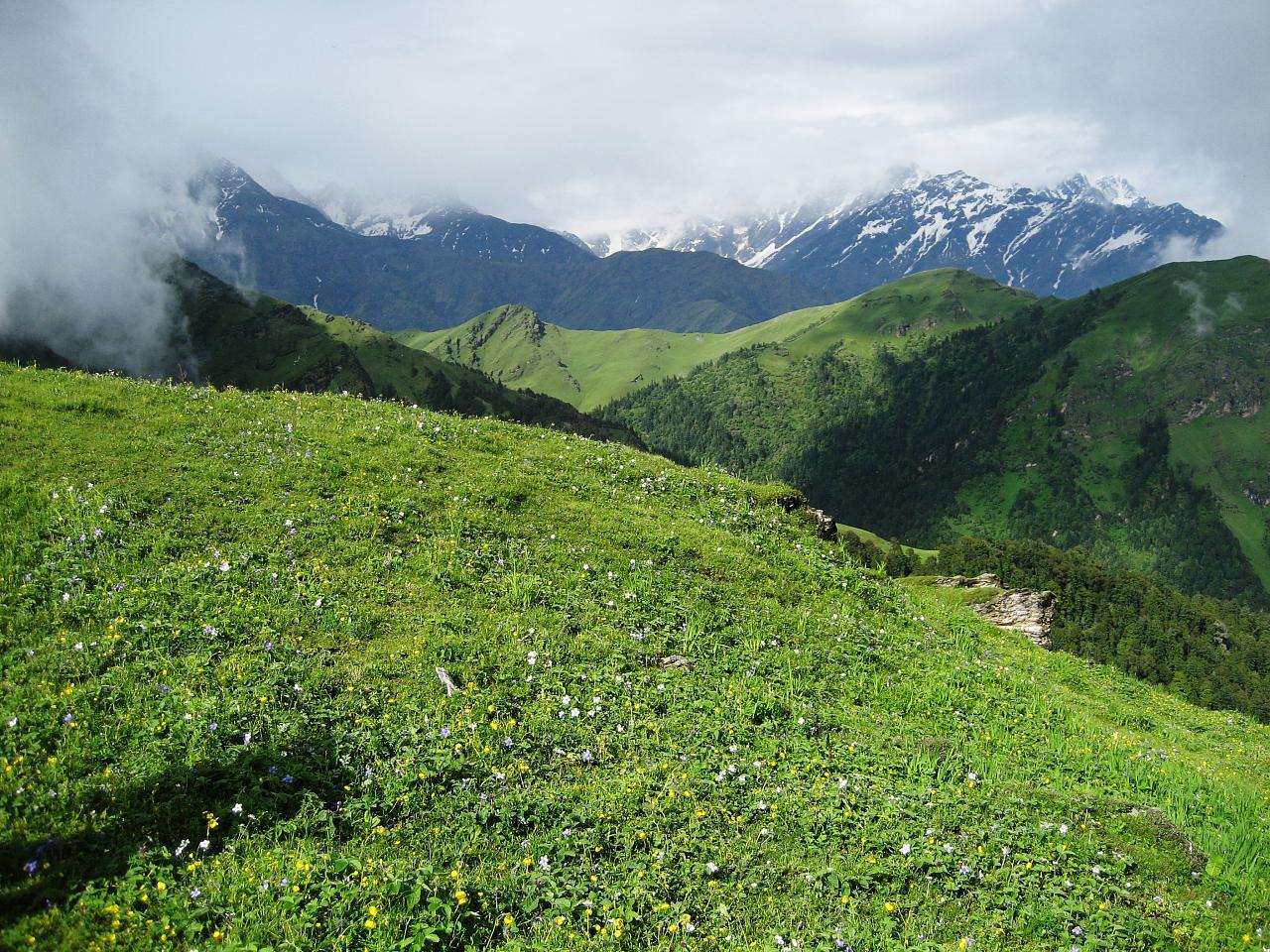 Wiki: Uttarakhand - upcScavenger