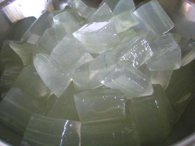 Aloe Vera gel, little white-green cubes of natural Aloe Vera
