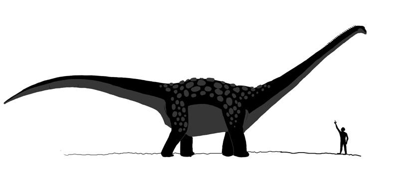 Картинки по запросу Антарктозавр