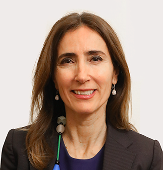 Carolina Schmidt Zaldívar.png