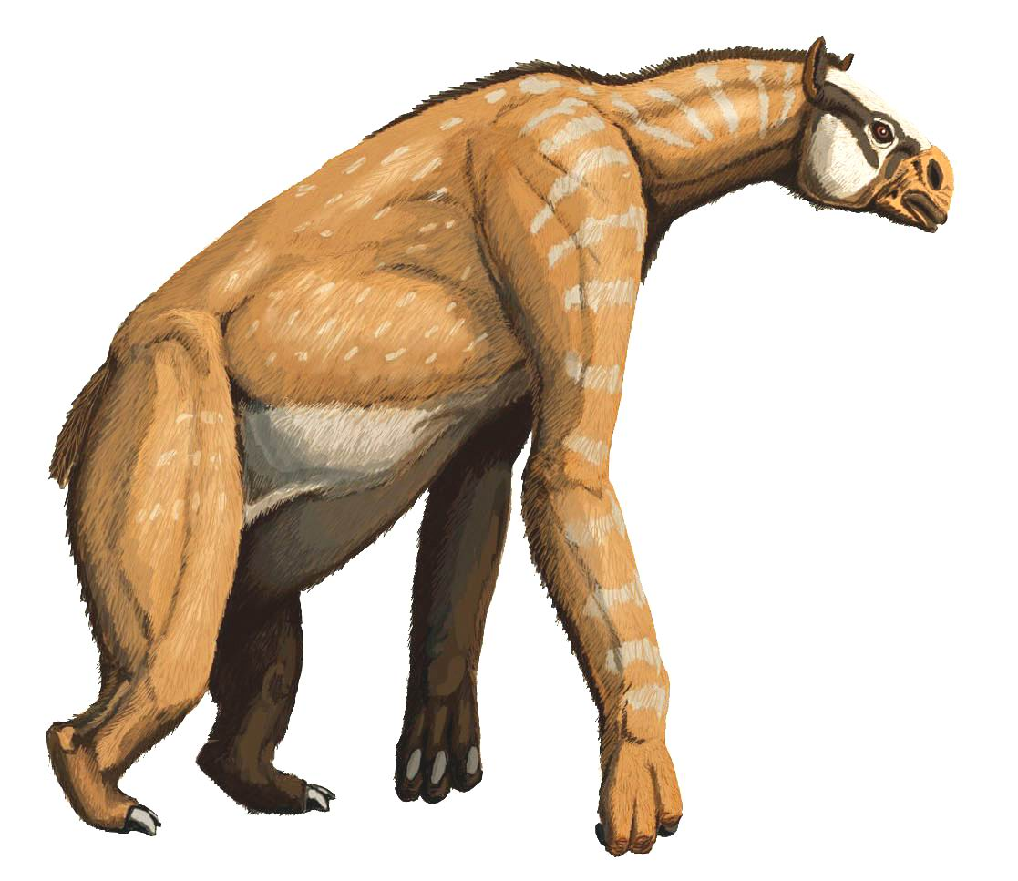 Wikimedia commons image of Chalicotherium