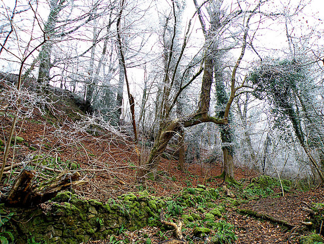 Coppet Hill - geograph.org.uk - 1100795