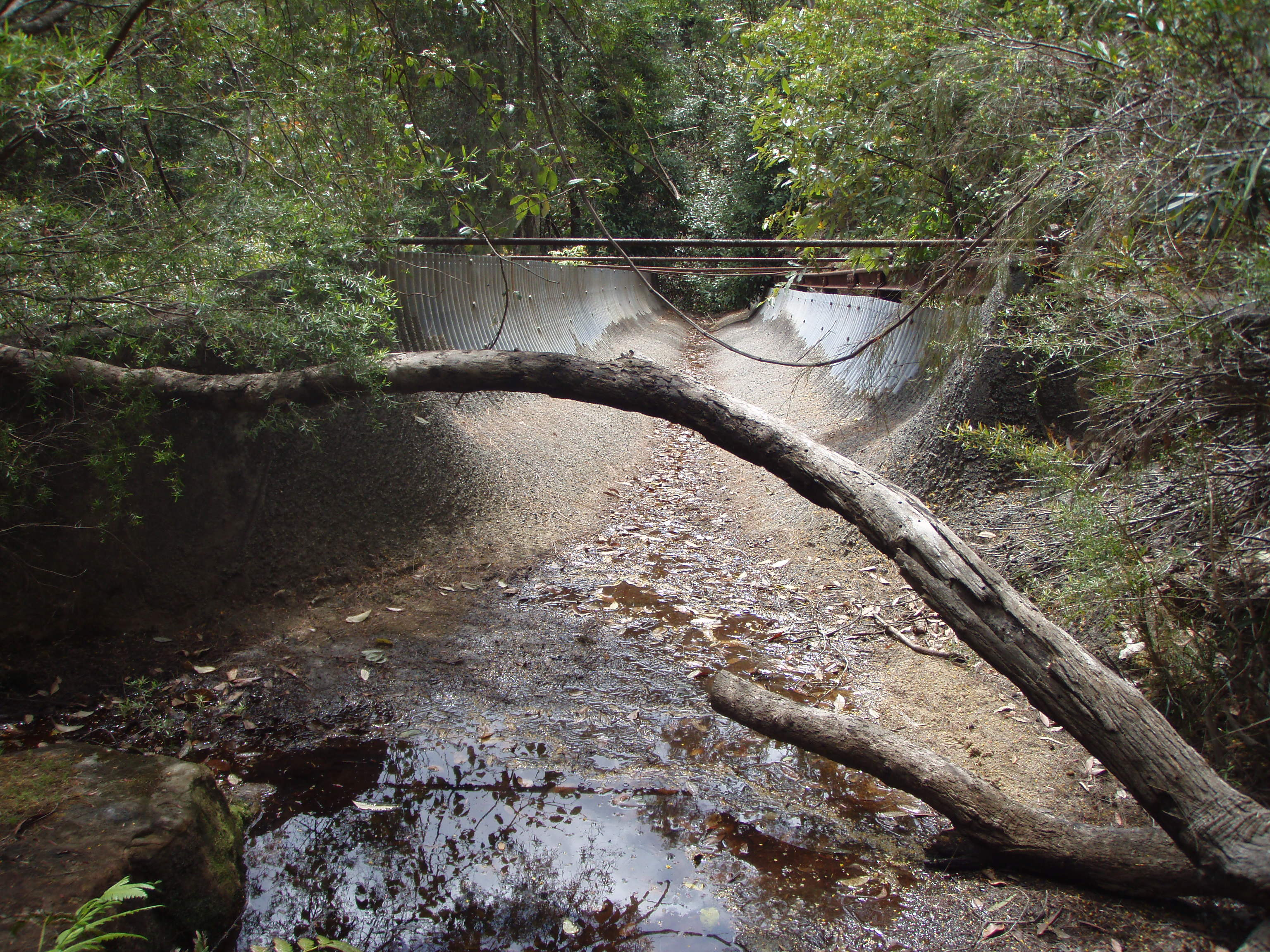 https://upload.wikimedia.org/wikipedia/commons/6/60/Creek_diversion_above_the_southern_portal_of_Woy_Woy_tunnel.jpg