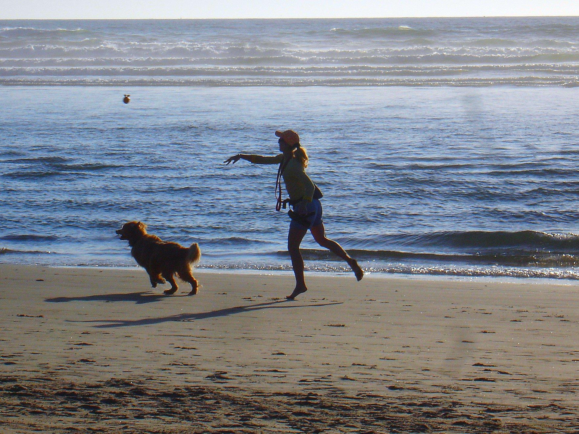 Dog Friendly Beach House