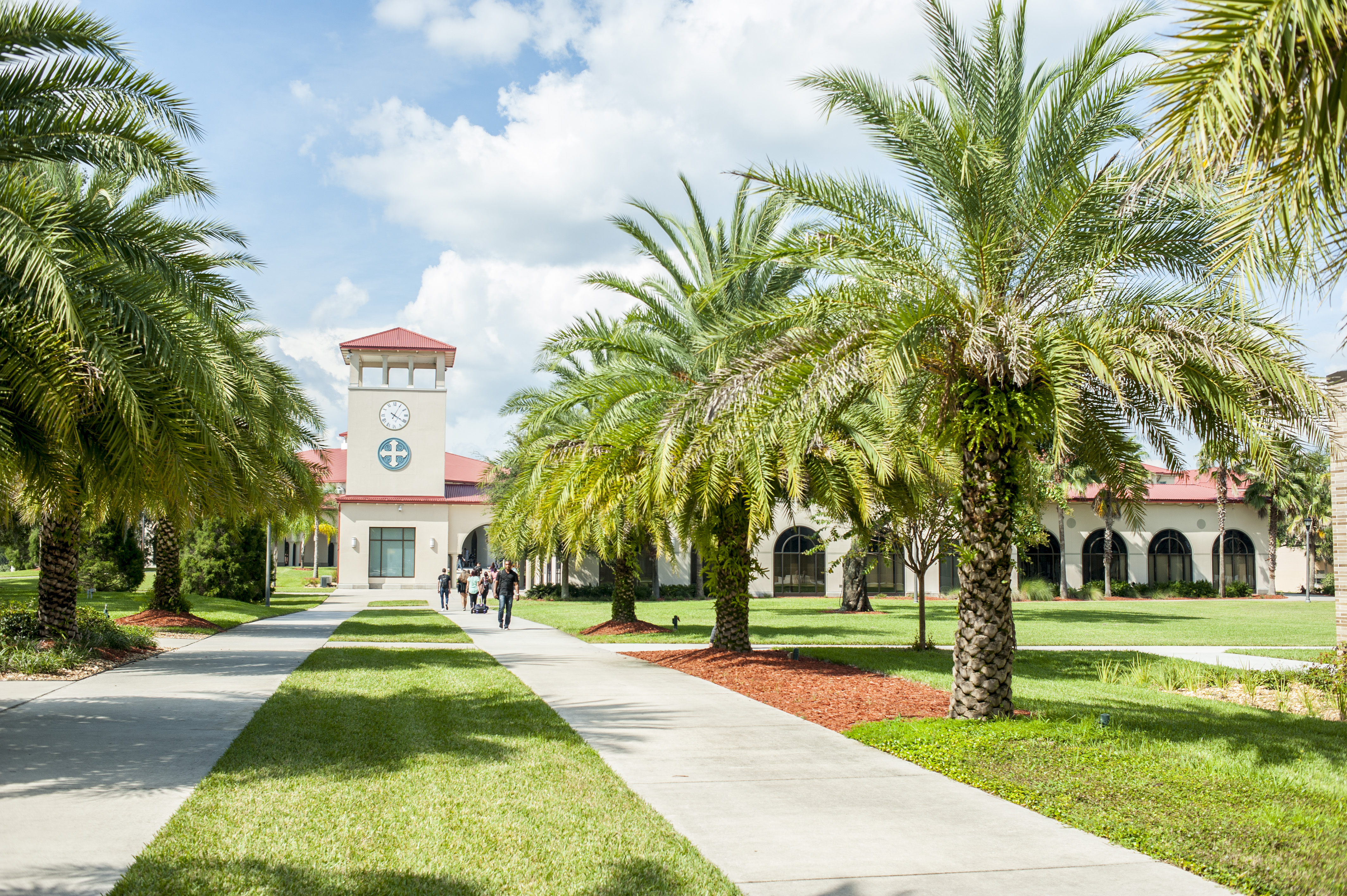 The Facts About Best Bachelor's Programs Uncovered