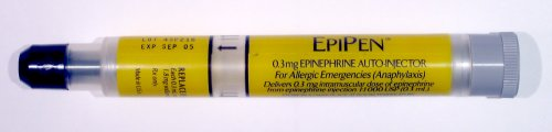 An EpiPen. Image from Wikimedia/Sean William.