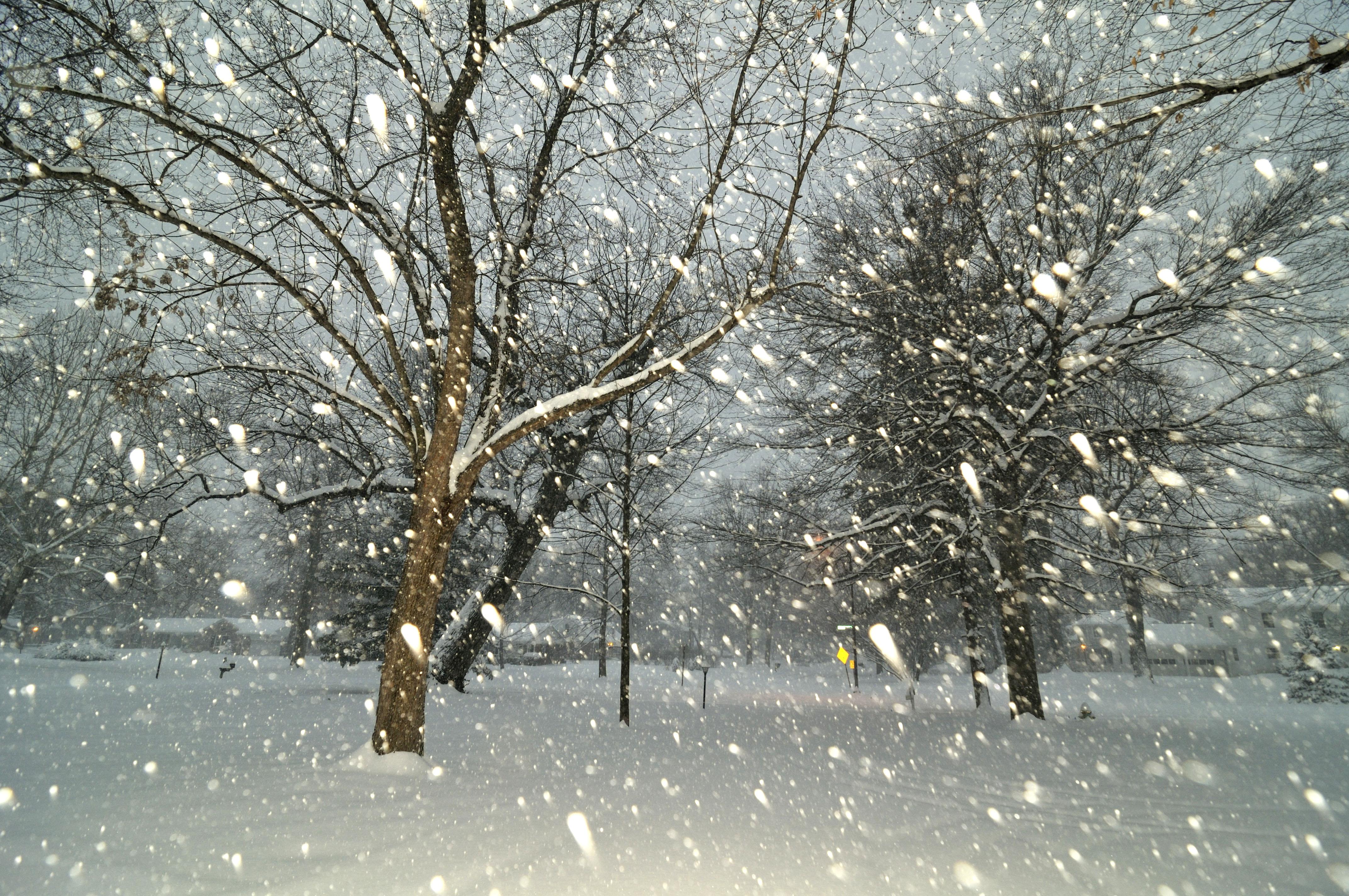 тихо падает снег картинки вариантом вечернего