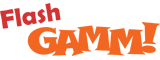 Flash GAMM logo copy.jpg