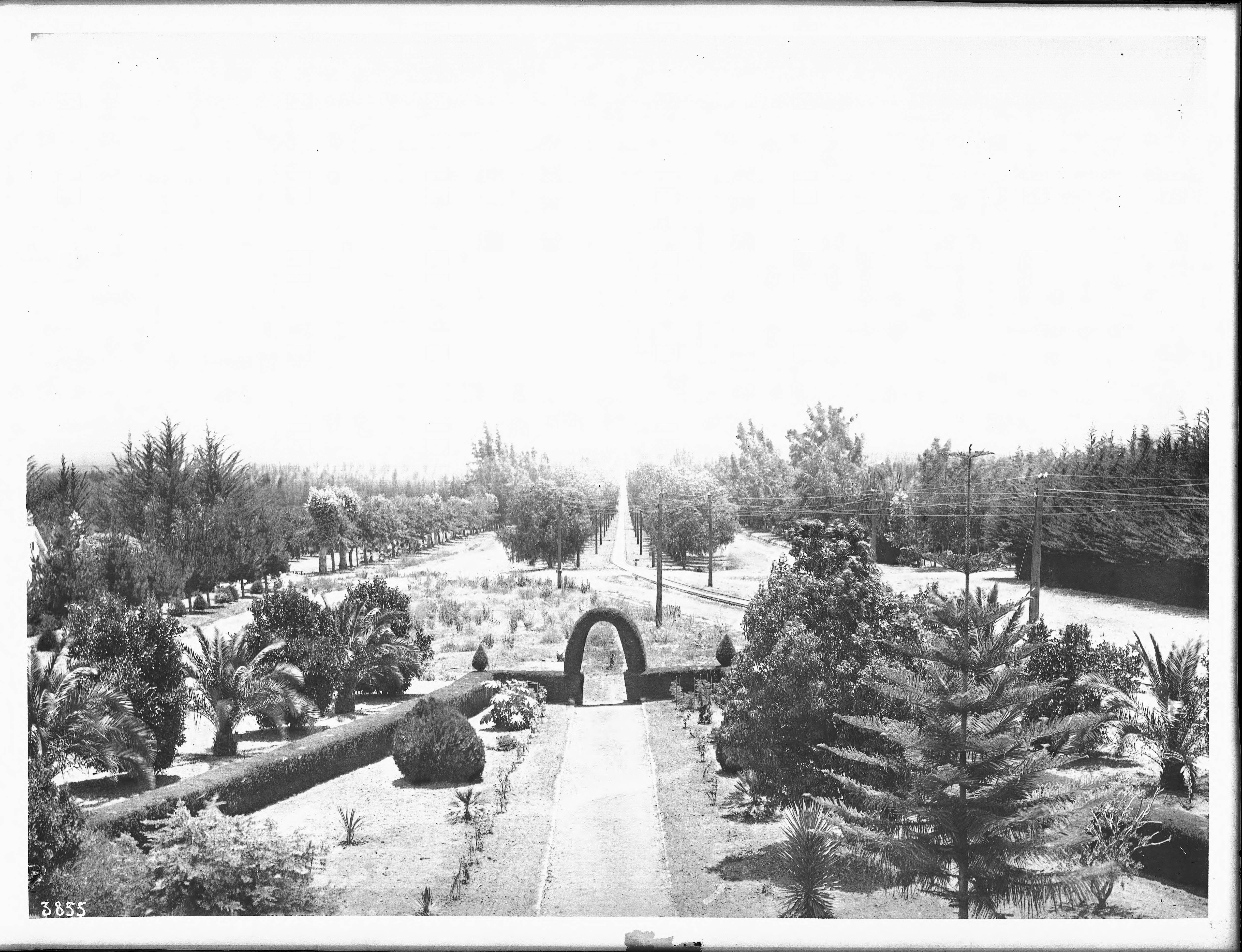 file garden on tree lined euclid avenue ontario california ca