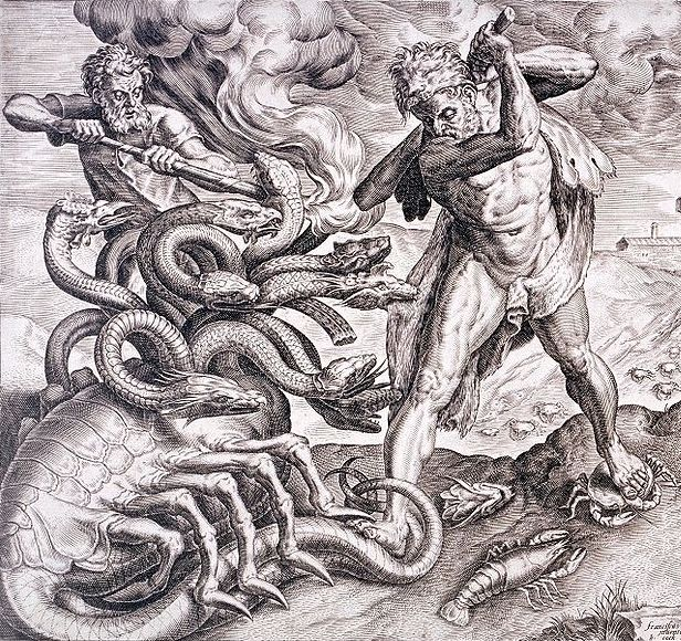 Anthropology In Practice The Rise Of The Hydra Couple Profiles On