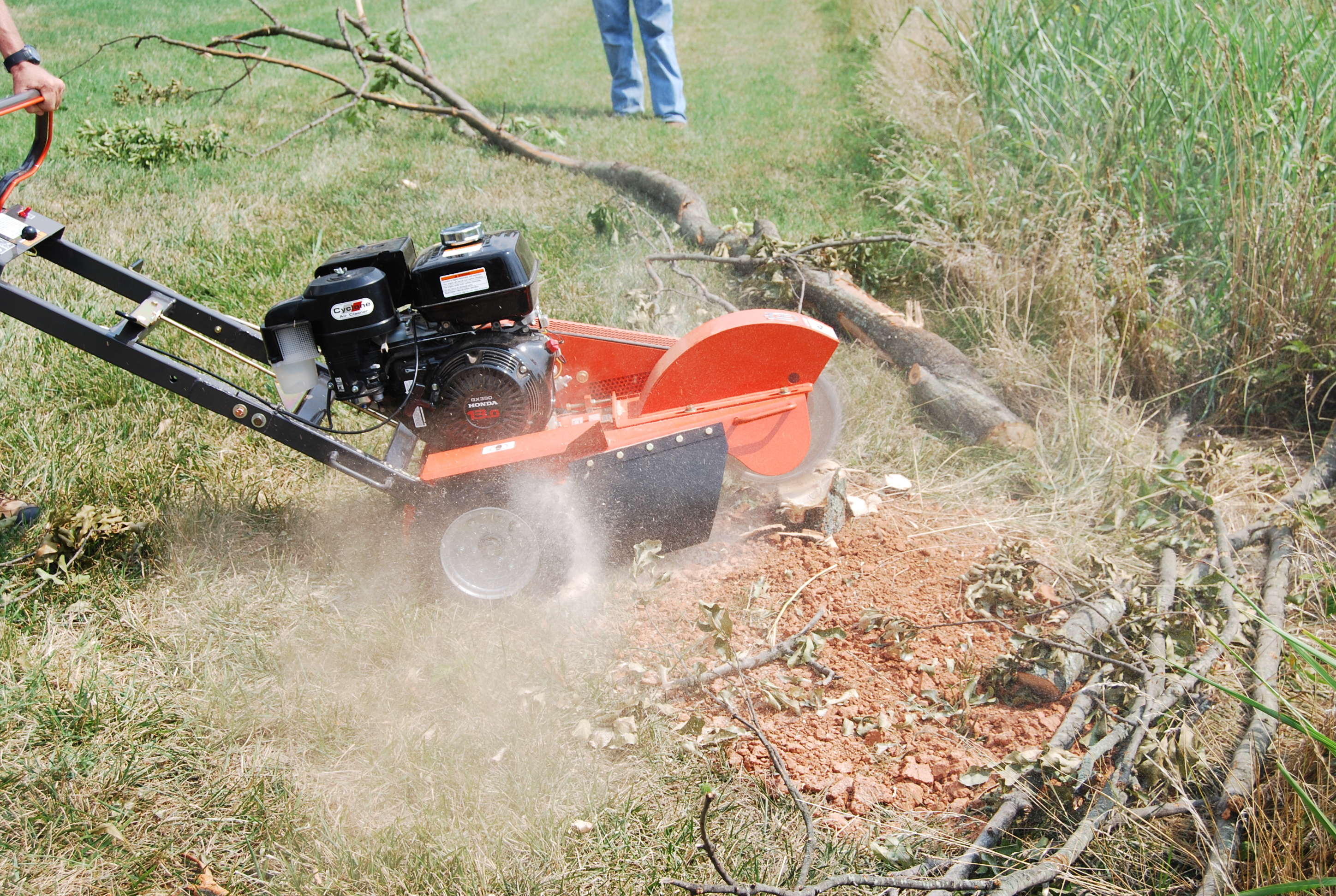 Image Result For What Is Stump Grinding