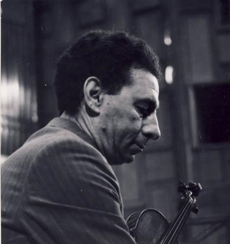 Ion Voicu