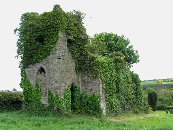 Ivy Clad Ruin - geograph.org.uk - 1312612