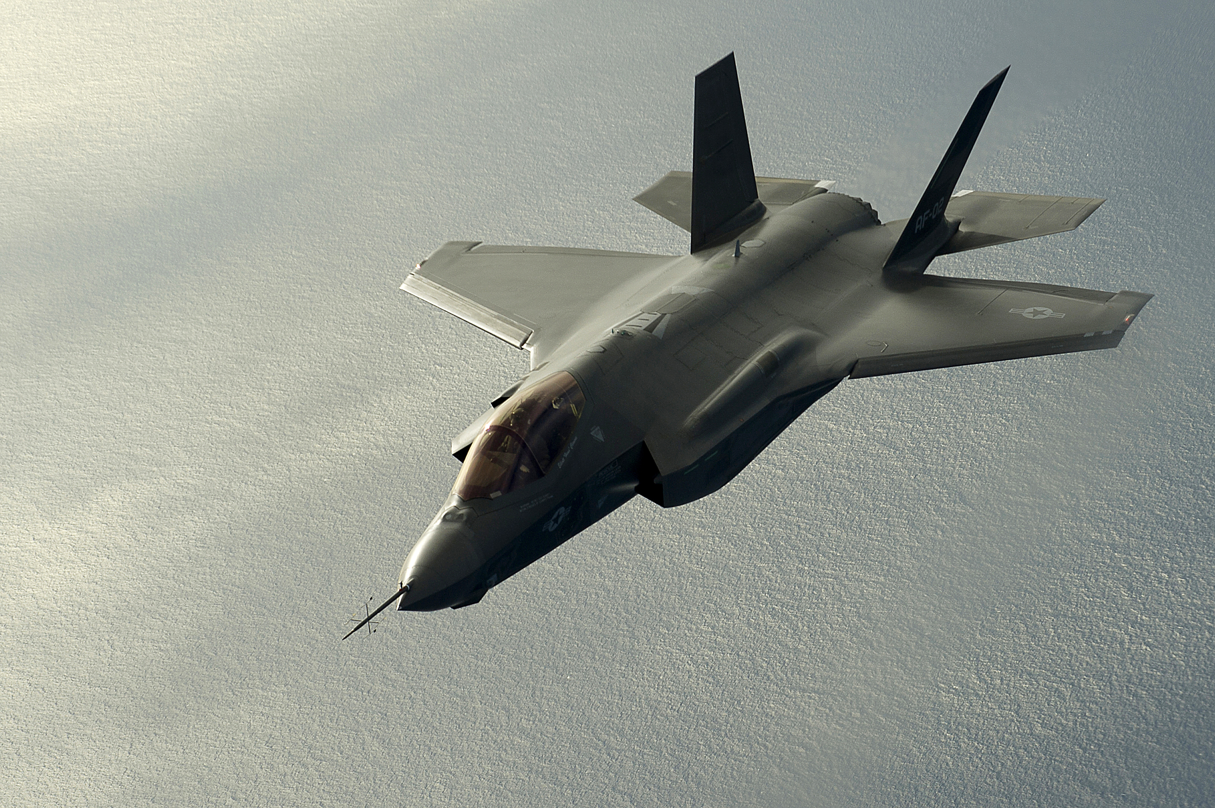 Lockheed Martin F-35 Lightning II 461th Flight Test Squadron.JPG