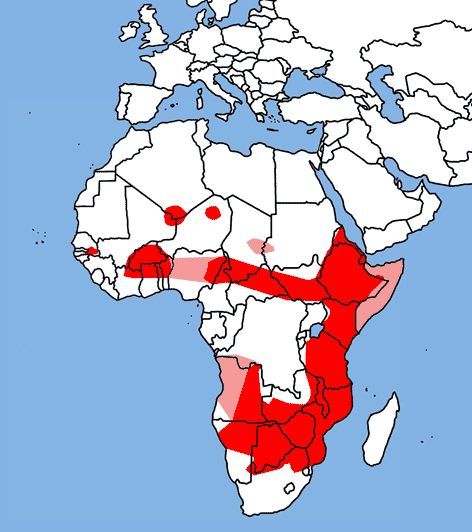 File:Lycaon pictus range map.png