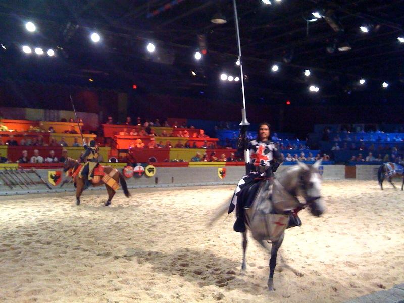File:Medieval Times Dinner Horses.jpg