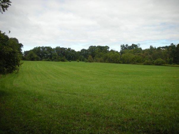 File:MiddleRunArea Field LenapeTrail.jpg