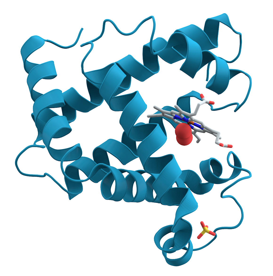 Protein Logo Taken from Wiki