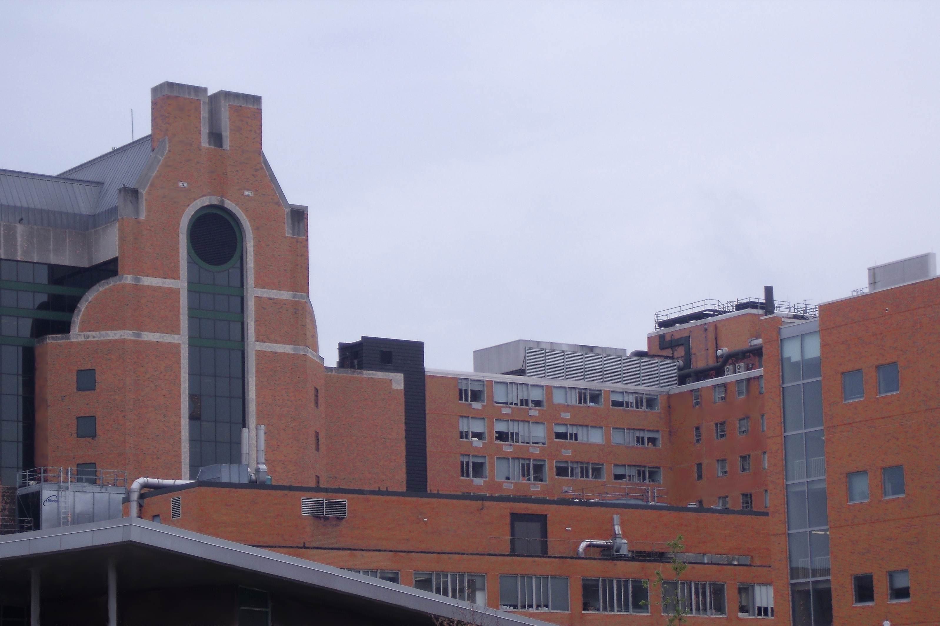 8ed16123770 File:OSU Medical Center adj1.jpg - Wikimedia Commons