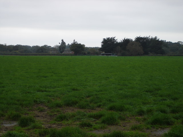 File:Pasture Land on Brixey's Farm - geograph.org.uk - 268176.jpg
