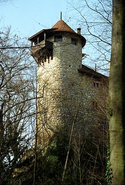 File:Reichenstein1.jpg