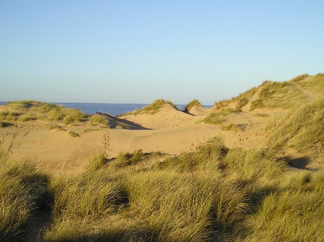 Sand Dunes, Formby - geograph.org.uk - 89211