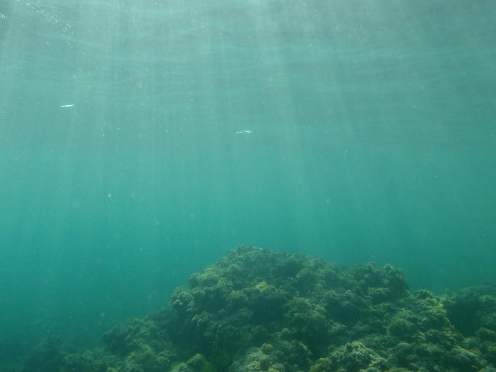 File:Sea Floor, Sea Depth