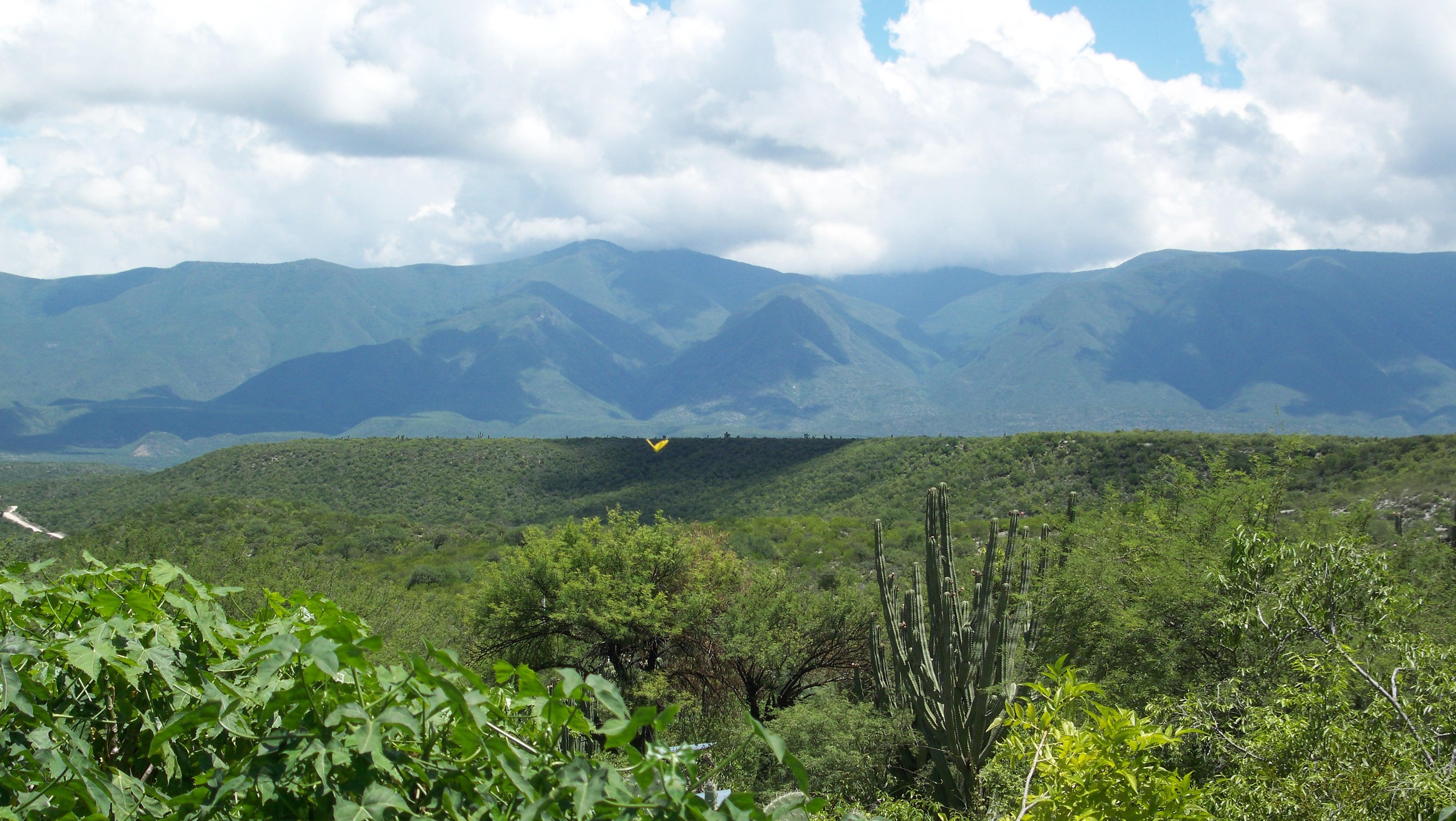 Sierra Sierra Madre Text File:sierra Madre Oriental