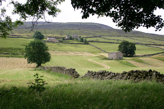 Swaledale Scenery - geograph.org.uk - 74964