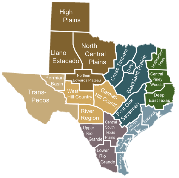 Texas Map Divided By Region