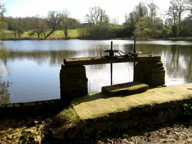 The Great Pond and sluice gate - Forde Abbey - geograph.org.uk - 1203365