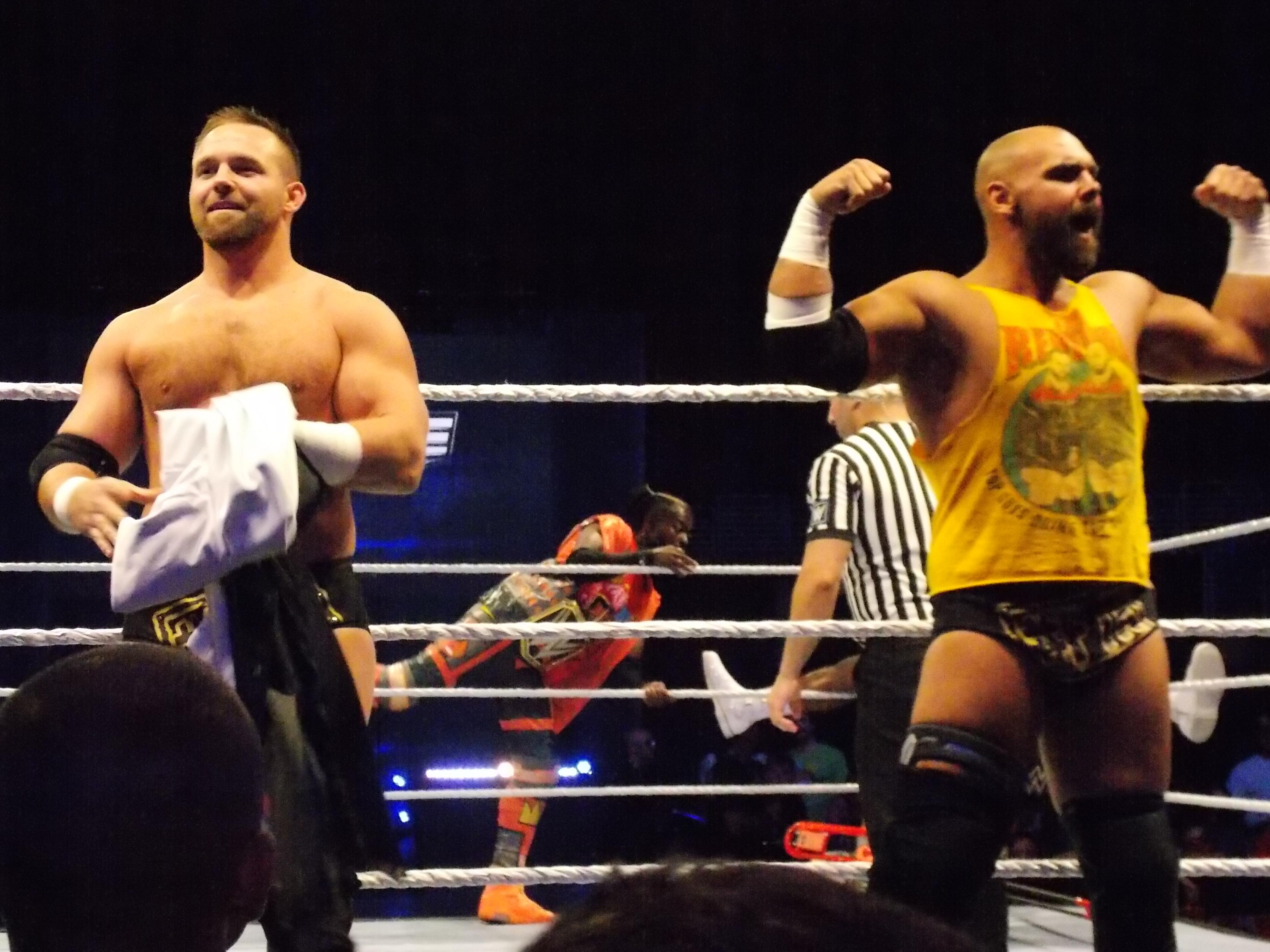 Ftr Professional Wrestling Wikipedia