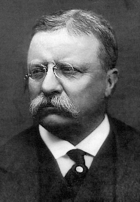 Theodore Roosevelt was Franklin Roosevelt's distant cousin and an important influence on his career.