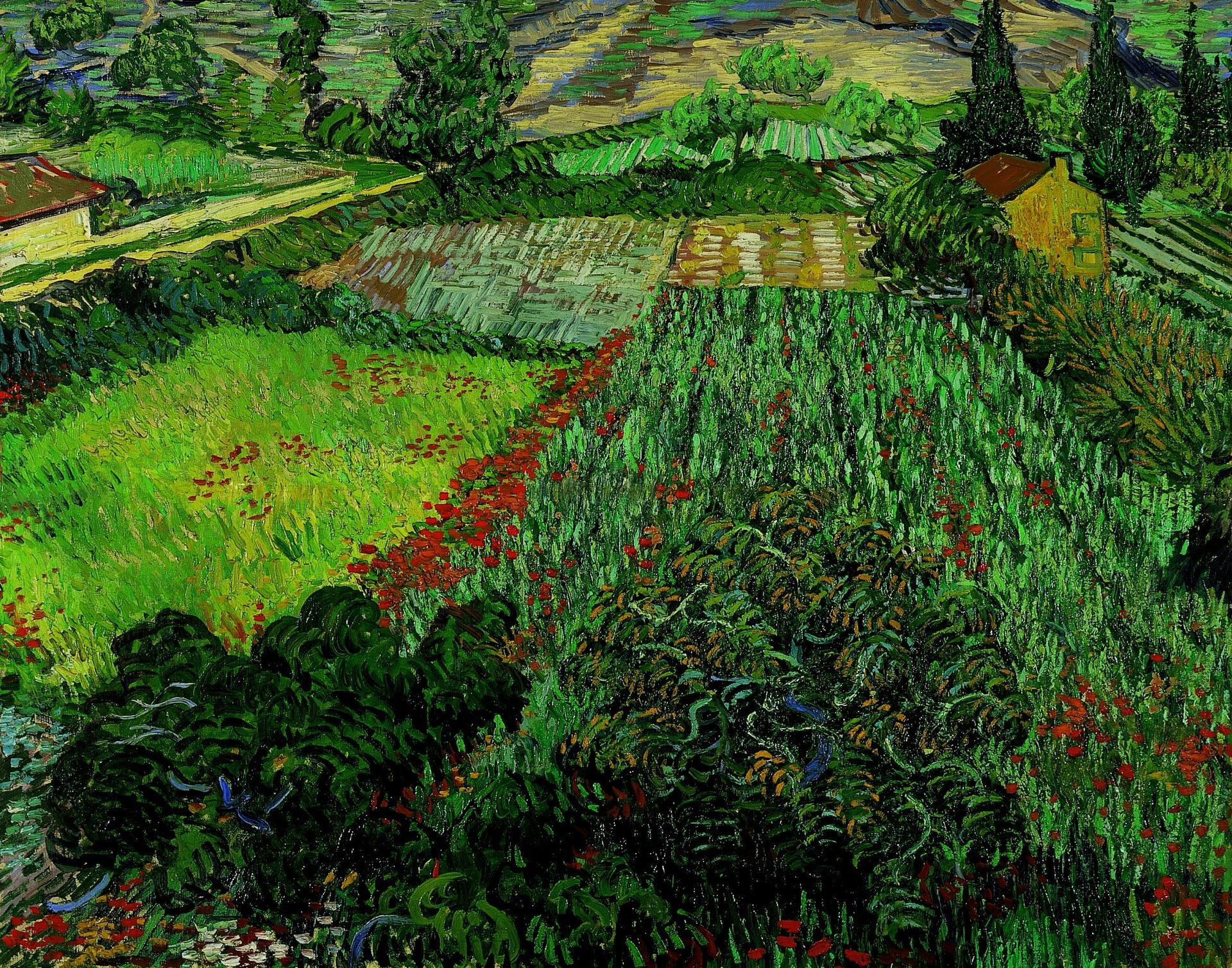 datei vincent van gogh field with poppies 1889 jpg wikipedia. Black Bedroom Furniture Sets. Home Design Ideas
