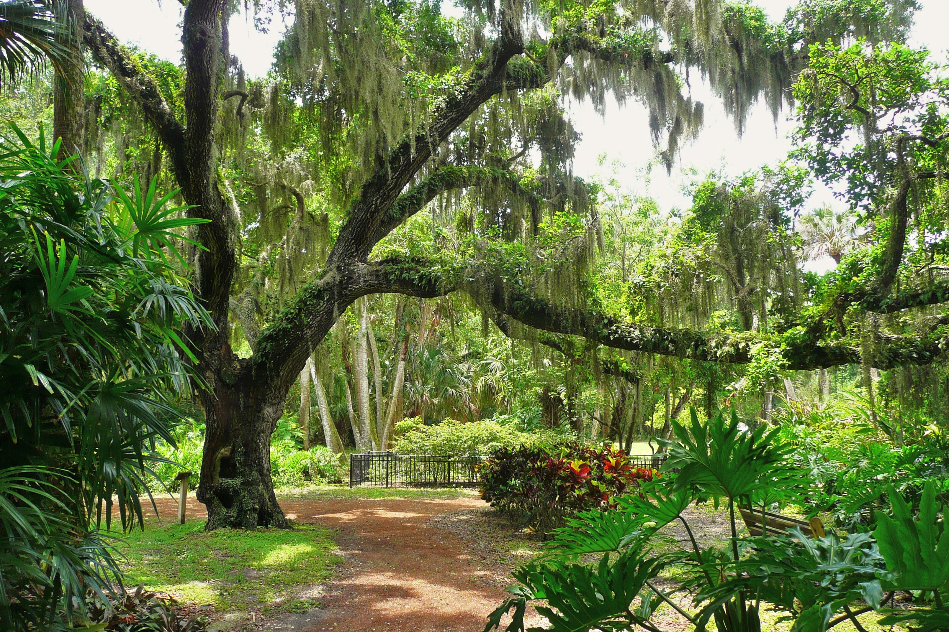 File Washington Oaks State Gardens Wikimedia Commons