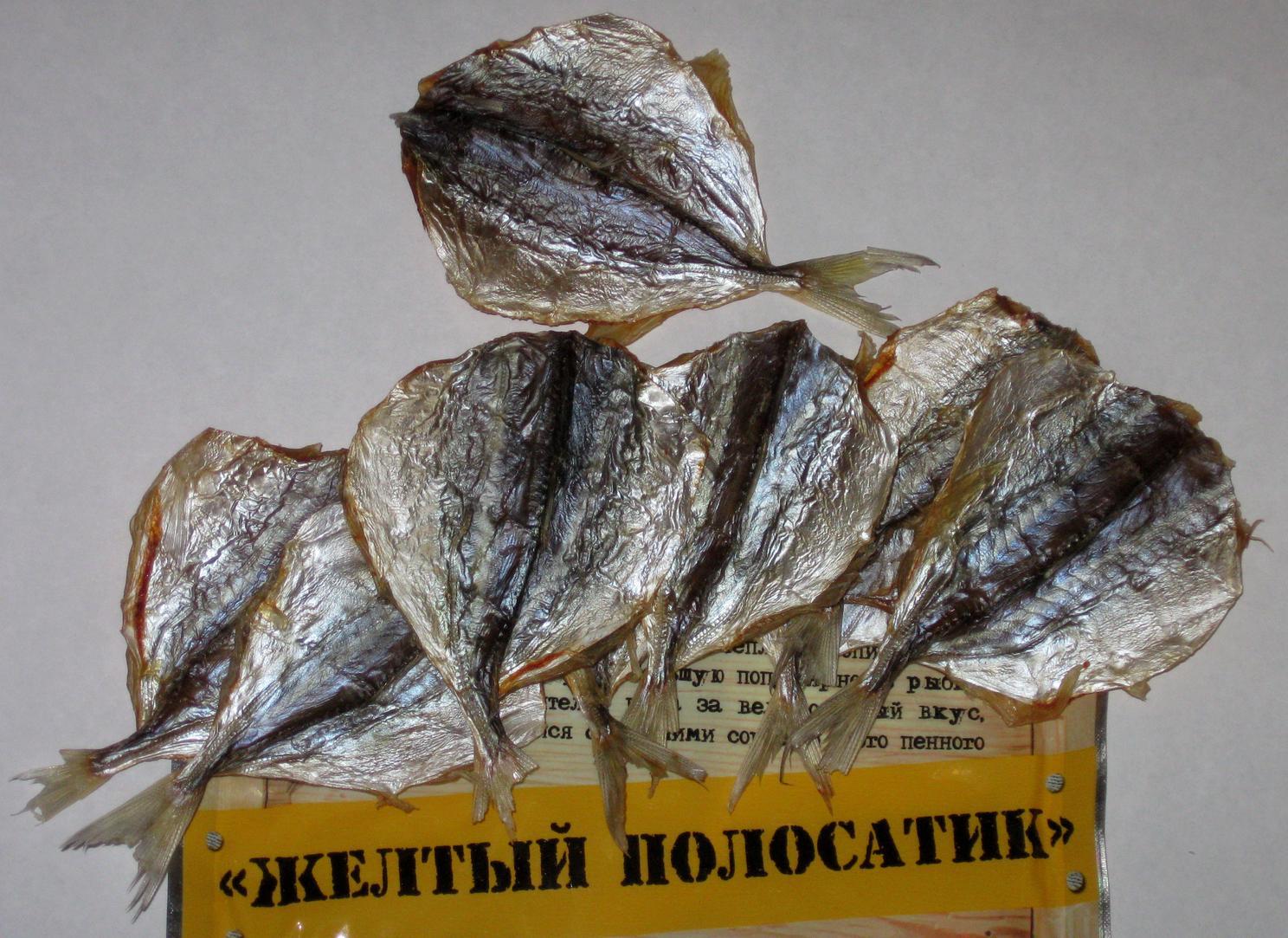 Фото желтого полосатика