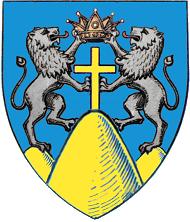 Fișier:Actual Suceava county CoA.png