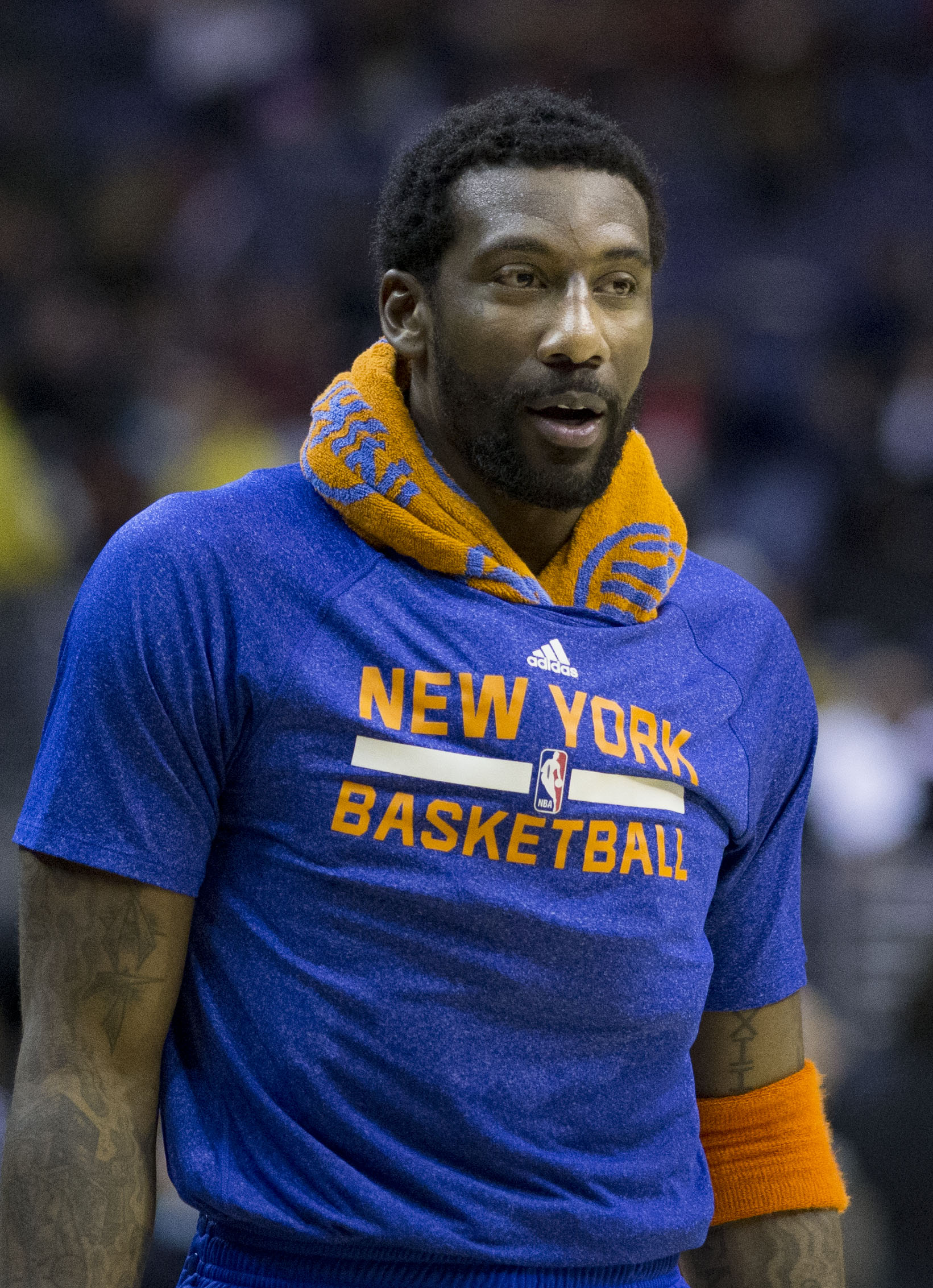 Image result for Amar'e Stoudemire