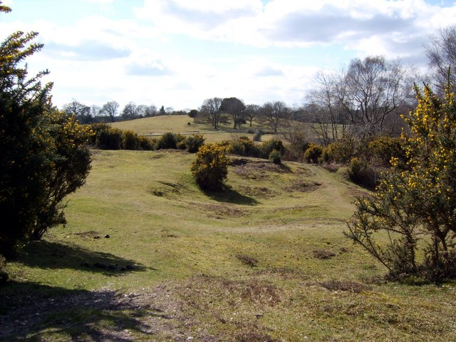 Bolton's Bench New Forest - geograph.org.uk - 740710