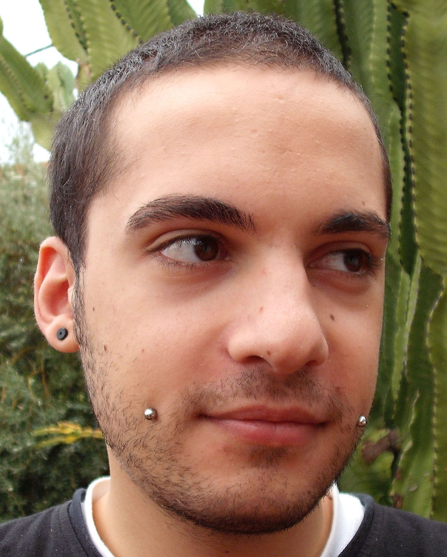 File:Cheek Hear piercing.jpg - Wikimedia Commons