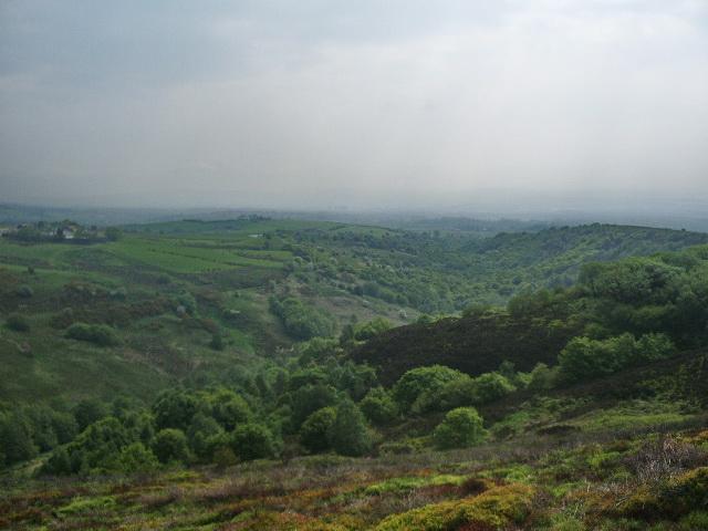 Cheesden Brook - geograph.org.uk - 813579