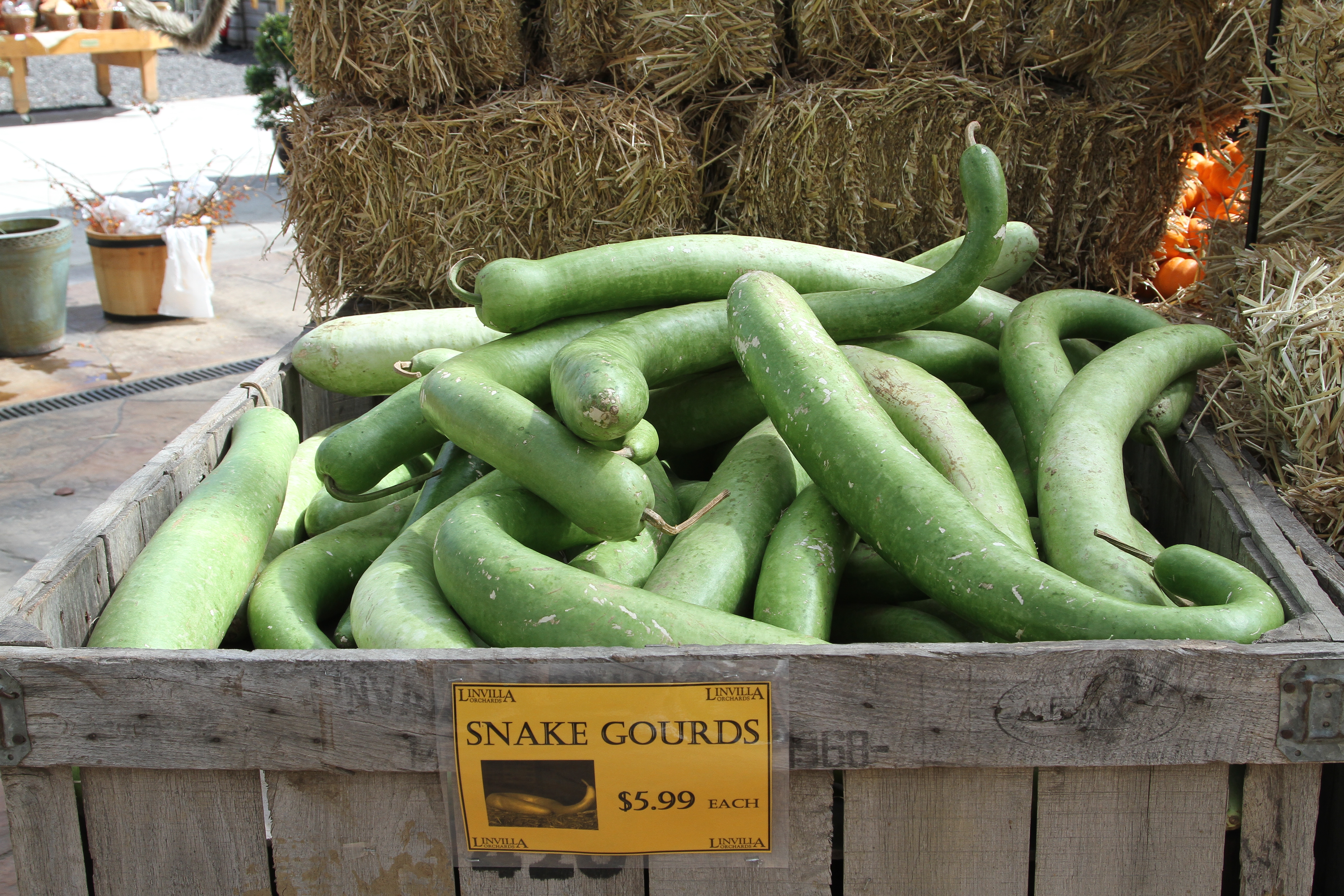 Unlike other vegetables and