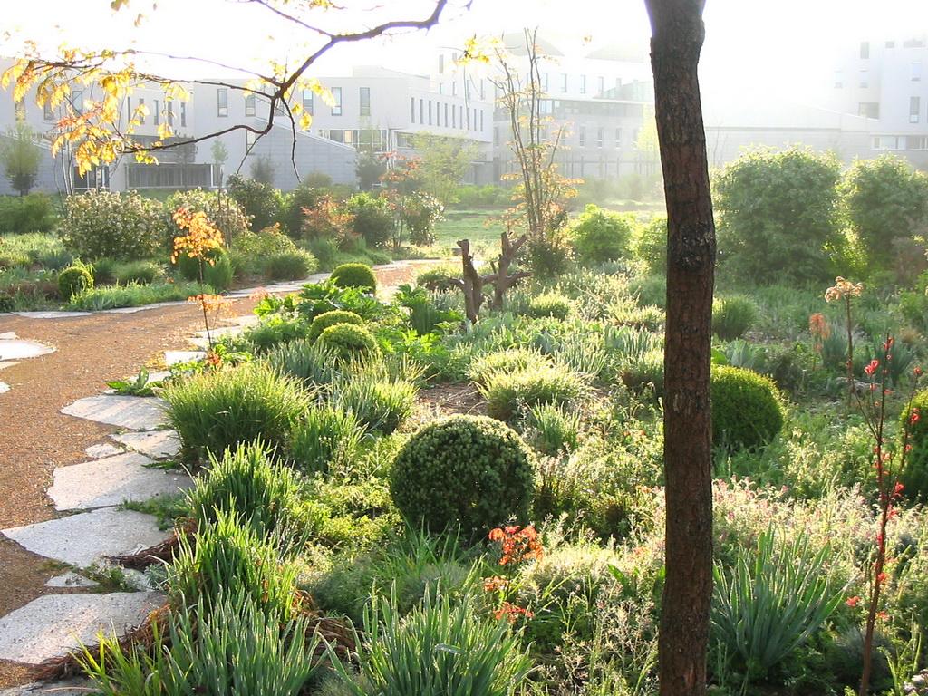 File enslyon 80581 ens lyon jardin de la communication 035 for Jardin quai branly