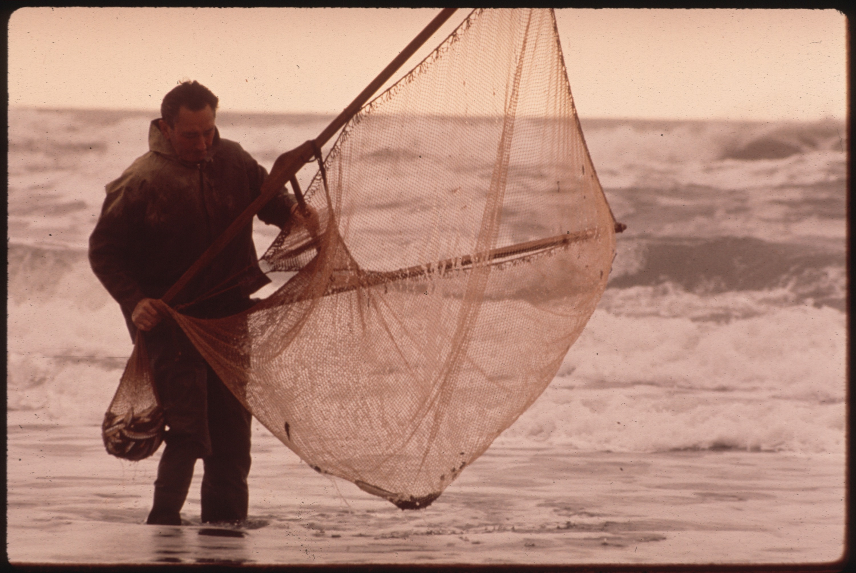 FISHING FOR SMELT ON GOLD BLUFF BEACH - NARA - 543033.jpg