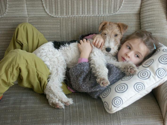 Foxterrier_als_Familienhund.jpg