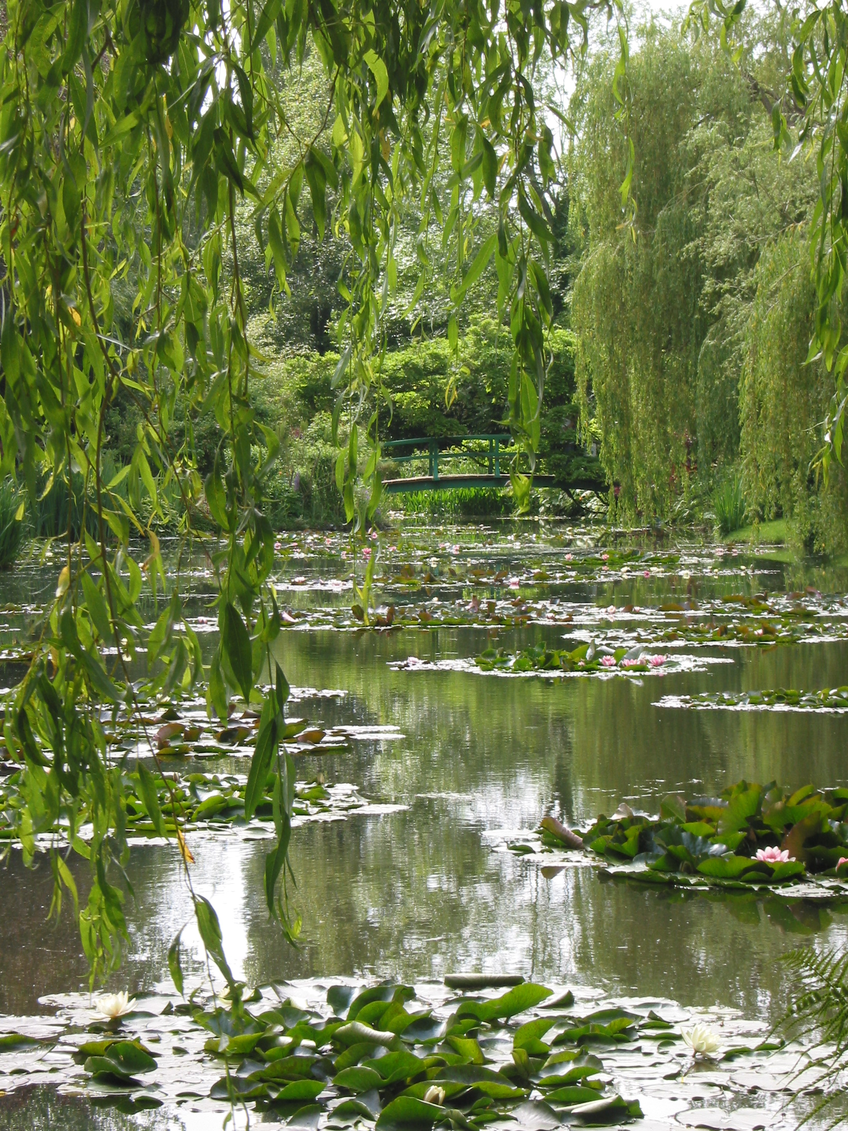 File wikipedia for Monet s garden france