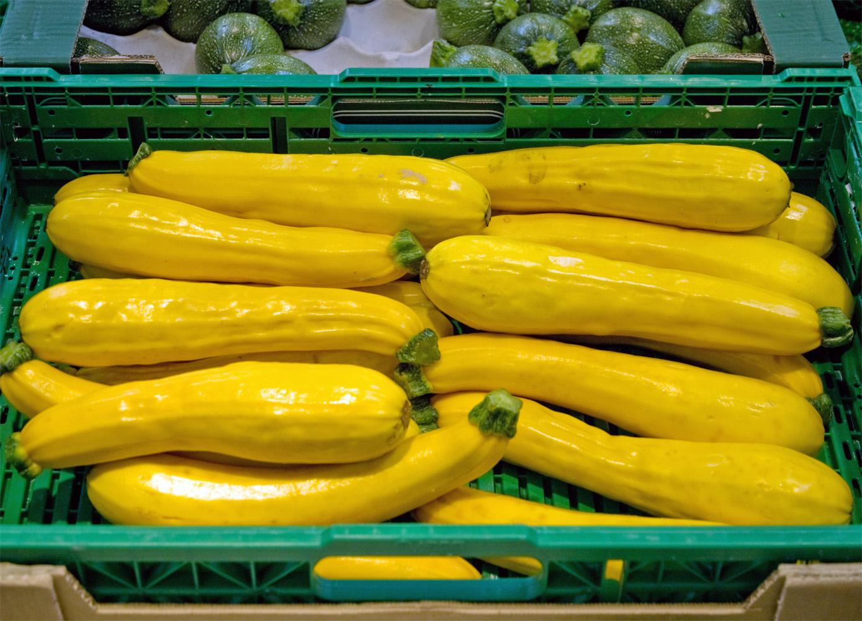zucchini wikipedia