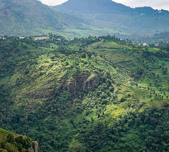 Las montañas del oriente de India - 41.4KB