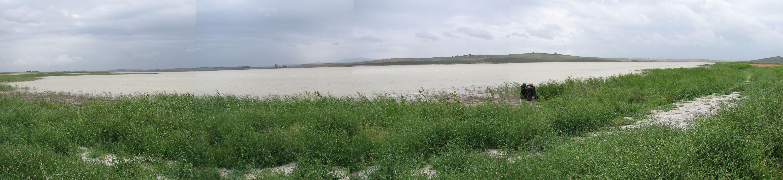 Laguna de Ruiz Sanchez.jpg