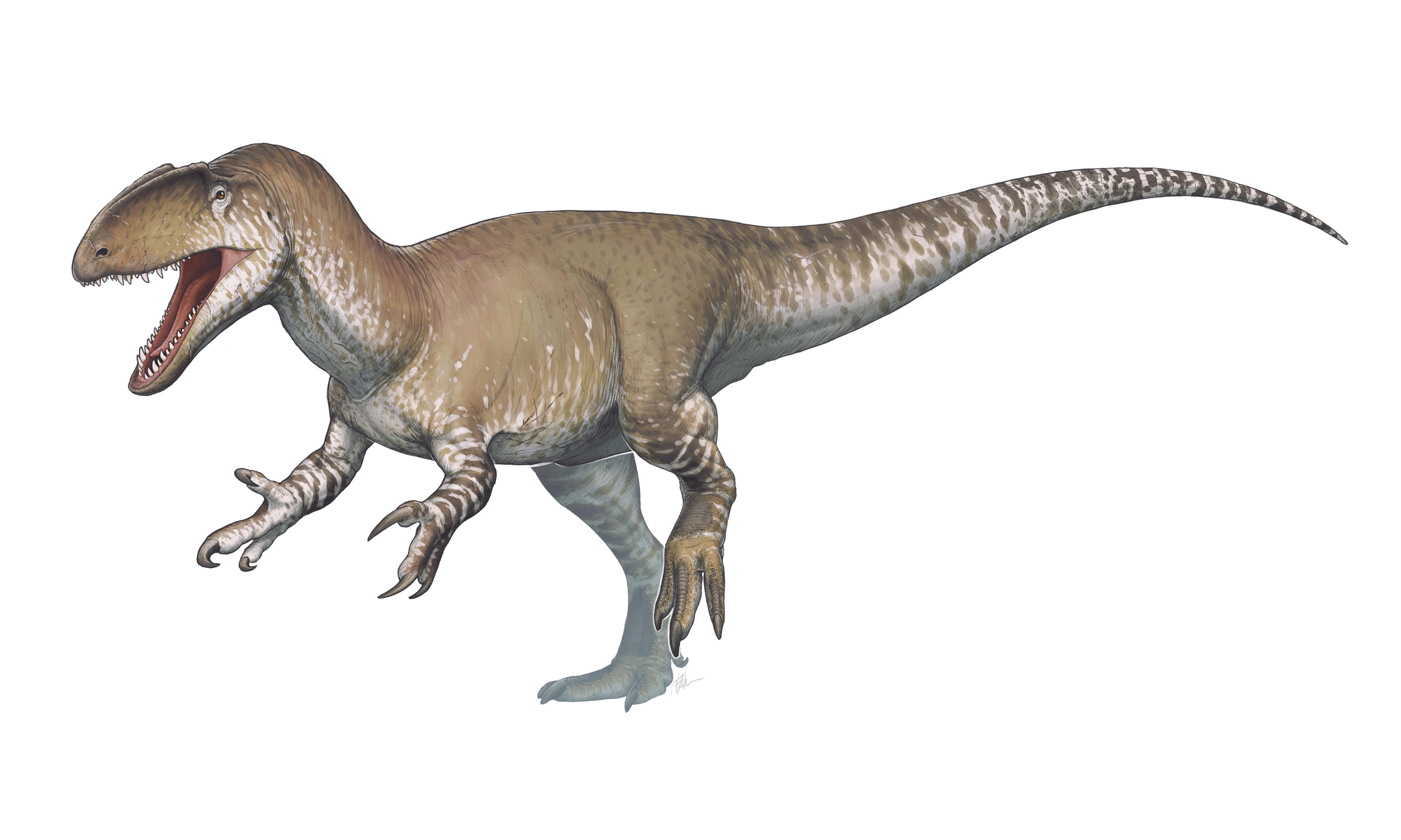 wiki allosaurus upcscavenger